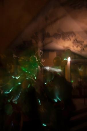 Luminous Muirhosue.20